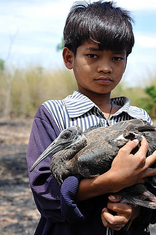 A local boy holds a White-Shouldered Ibis chick in Koh Preah.