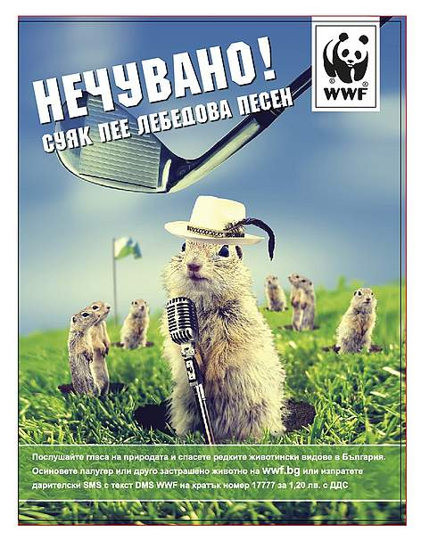 WWF print ad with ground squirrel for individual fundraising campaign 2011 in Bulgaria / ©: Ogilvy Sofia