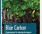 Cover of WWF Blue Carbon report for the Coral Triangle