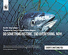 End overfishing now