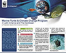 Marine Turtle &amp; Climate Change Program in LAC - a Proactive Stance from Science to Action