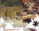 Guía para la compra de productos maderables certificados.