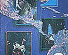 WWF Centroamérica - Revista Nº2
