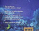 WWF Centroamérica - Revista Nº6