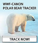 WWF-Canon Polar Bear Tracker / &copy;: Michel TERRETTAZ / WWF-Canon