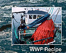 WWF recipe for legal fish in the Baltic Sea